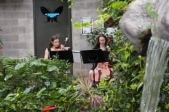 Butterfly Conservatory 5